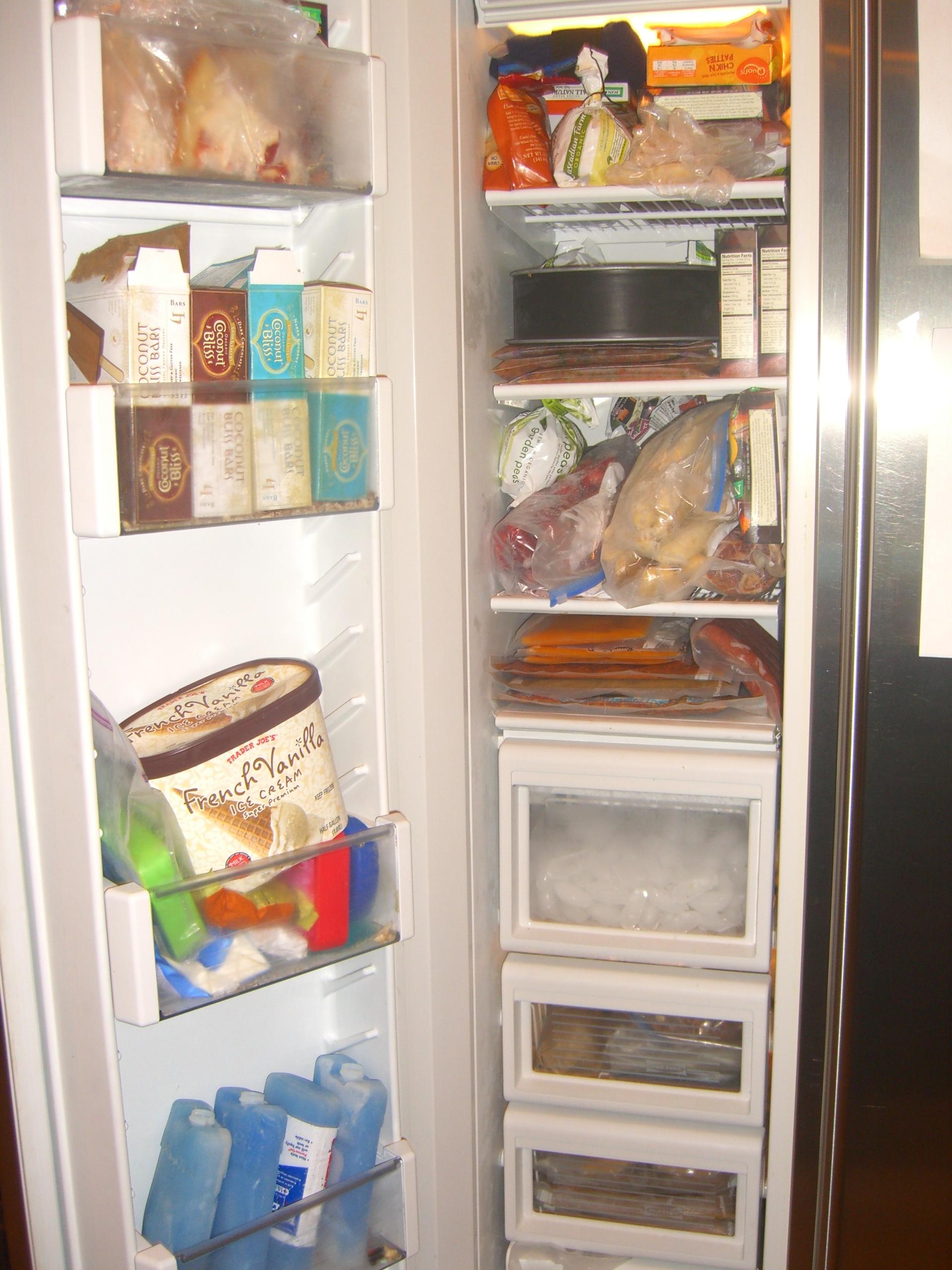 Freezer BEFORE
